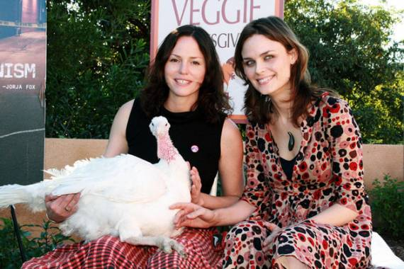 Emily Deschanel Poses With a Live Turkey at PETA's Vegetarian Thanksgiving Feast