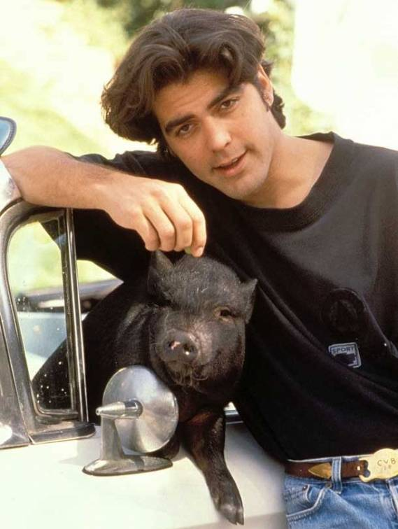 George Clooney owned a pig