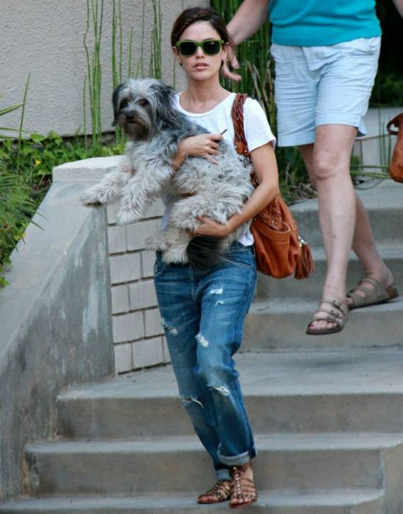 Television personality Rachel Bilson was photographed doing grocery shopping in Los Angeles along with her pet dog, a mixed breed fluffy named 'Thurman Murman'.