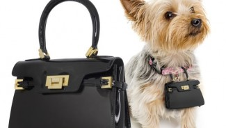 VeryFirstTo.com and Forzierie comes up with Handbags for Fashionable Dogs