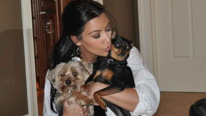 Photo of Kim Kardashian & her Dog Gizmo & Brody