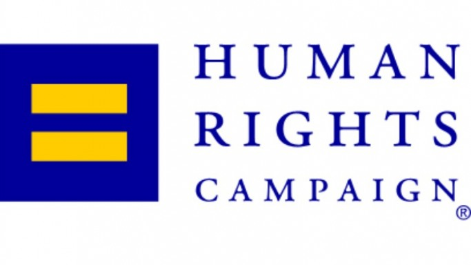 Pink is a huge supporter of Human Rights Campaign