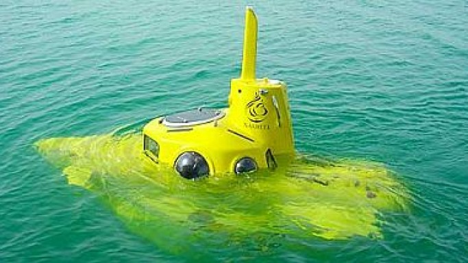 Microsoft's Paul Allen's yellow submarine costs $12 million