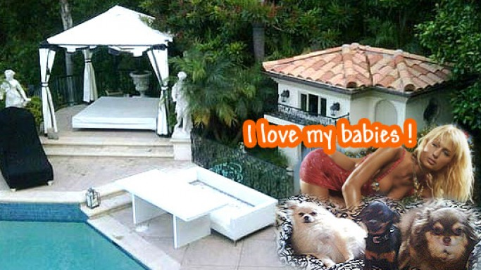 Paris Hilton unveils her pet mansion on Twitter
